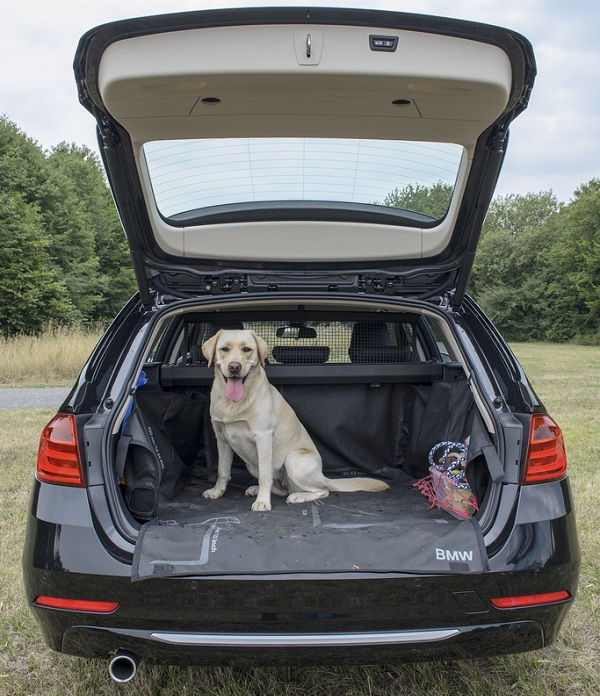 dog friendly lifestyle cars features that every pet owner should know cars for lifestyle. Black Bedroom Furniture Sets. Home Design Ideas